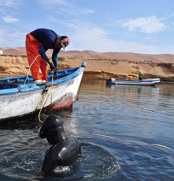 maricultura-trabajo-de-campo